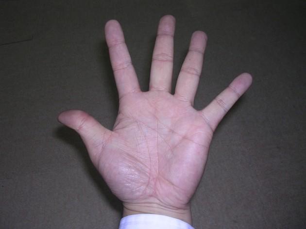 手を広げて